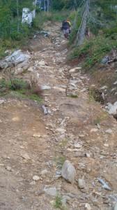 Coborâre din golul alpin
