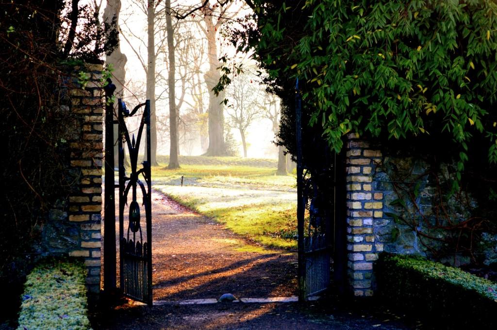 Vederea dinspre grădini spre parc, în lumina apusului